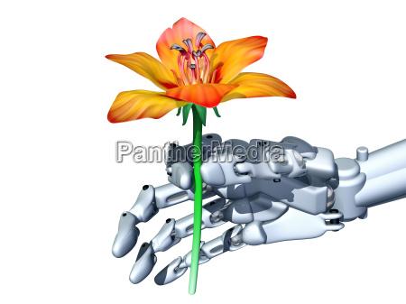 romantic robot