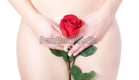 schoene nackte frau mit rose