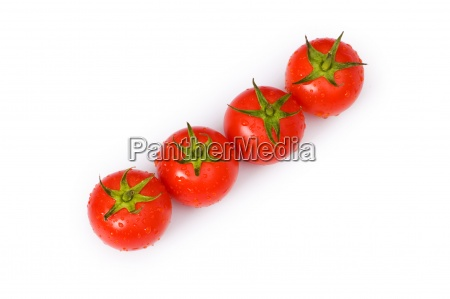 row of tomatoes isolated on the