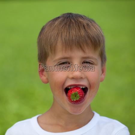 kleiner junge isst eine erdbeere