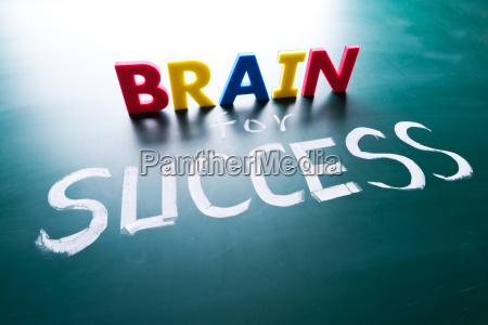 brain for success concept