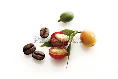 stilleben, essen, nahrungsmittel, lebensmittel, nahrung, kaffee - 10688941