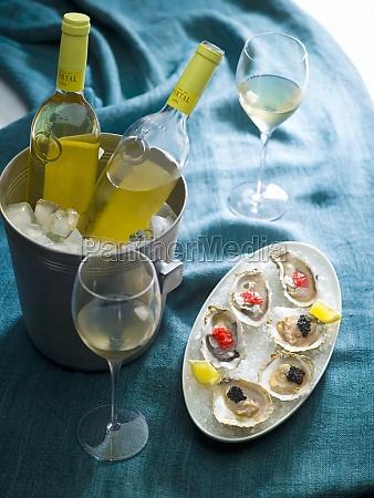 mollusc elegance stylish shellfish seafood festive