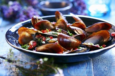 food aliment mollusc kitchen cuisine plate