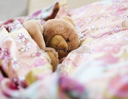animal bed bear animals horizontal toy