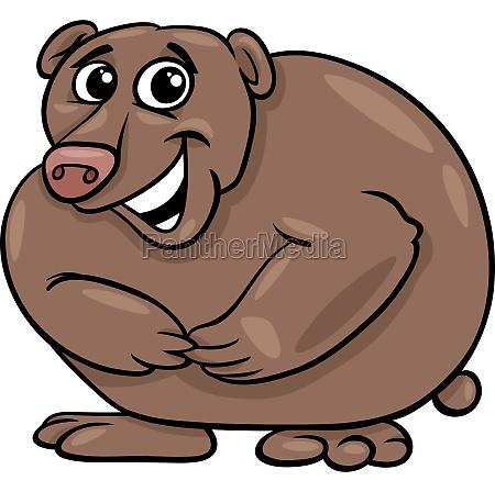 bear animal cartoon illustration