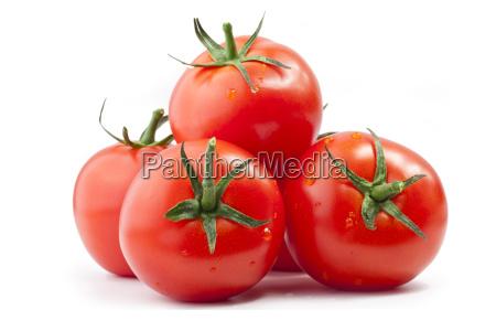 tomaten auf weissem