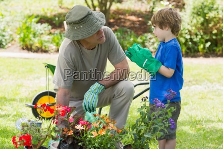 grandfather and grandson engaged in gardening