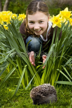 young girl watching a hedgehog