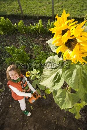portrait of girl watering sunflower high