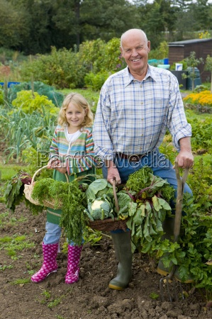 man and granddaughter picking vegetables in