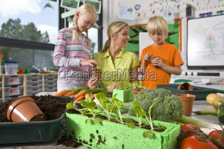 teacher and students planting vegetables in