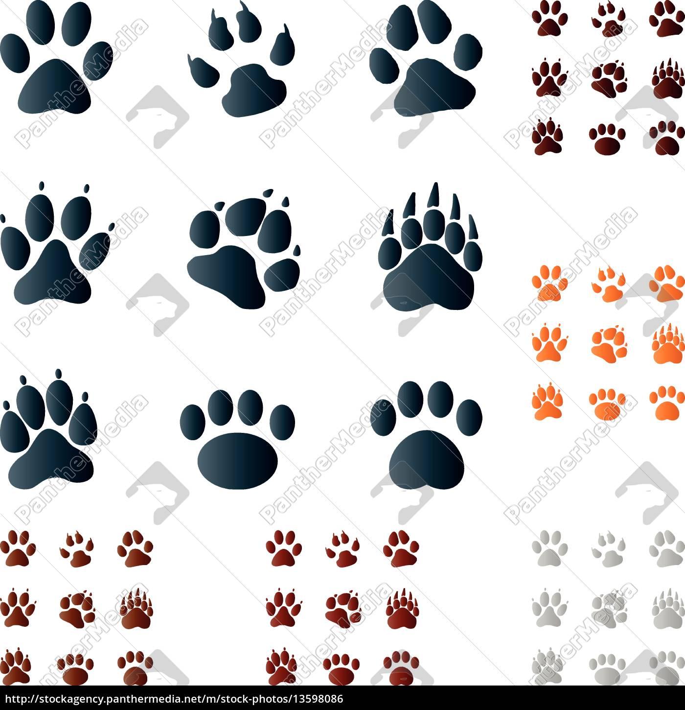 pfoten, , zeichen, , symbole, , buttons - 13598086