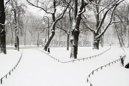 alexandriyski park at snowfall in saint
