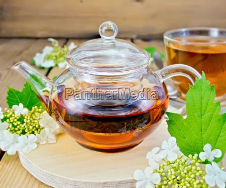 tea from flowers of viburnum in