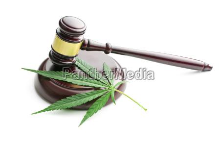 cannabis blatt und richter hammer
