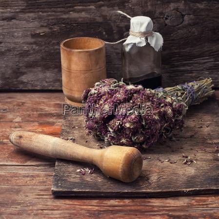 harvesting of medicinal herbs