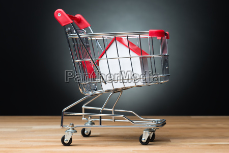house model in shopping cart on