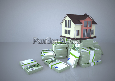house and euro notes illustration