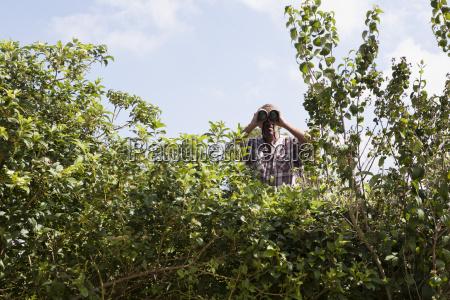 man looking through binoculars over hedge