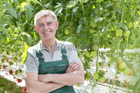 smiling man in greenhouse with tomato