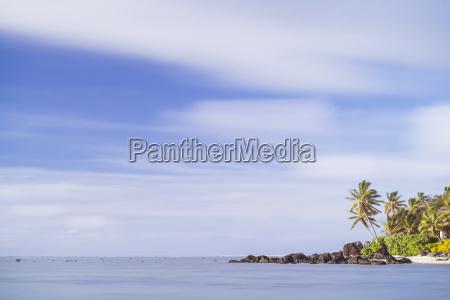 palm tree long exposure muri rarotonga