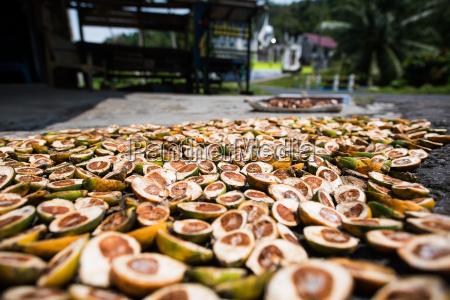 betel nuts being sold in pulua