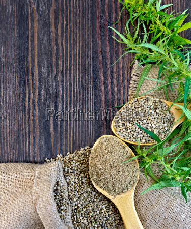 flour hemp with grain in spoons