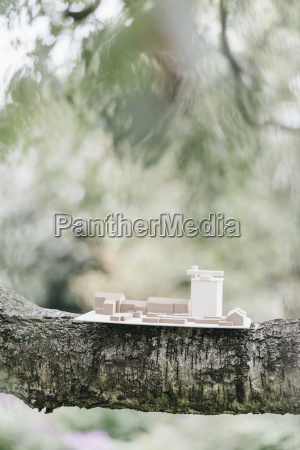 architectural model on a branch