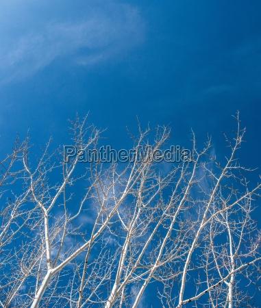 winter outdoor freiluft freiluftaktivitaet im freien