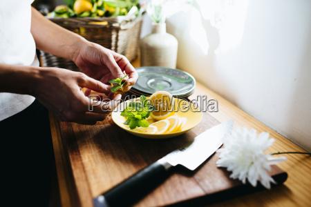frau hand weiblich blume pflanze gewaechs