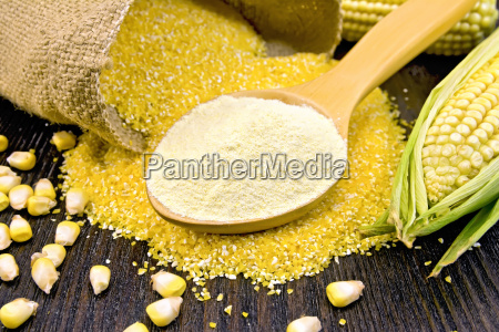 flour corn in spoon with grains