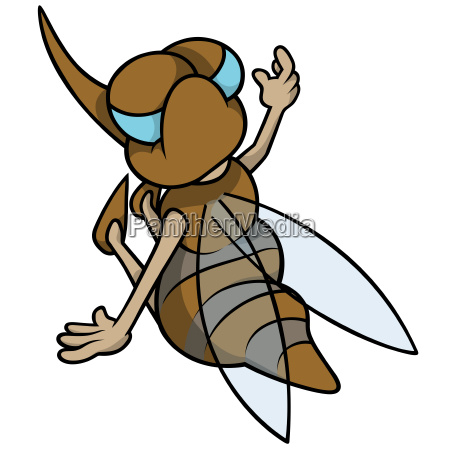 brown striped mosquito sitting