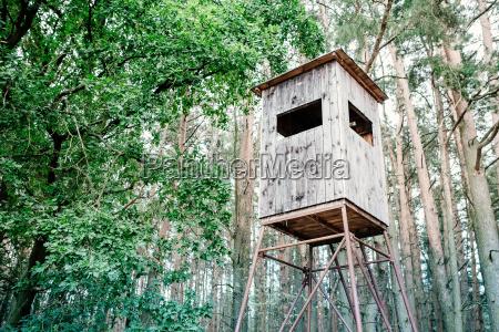 germany brandenburg raised hide