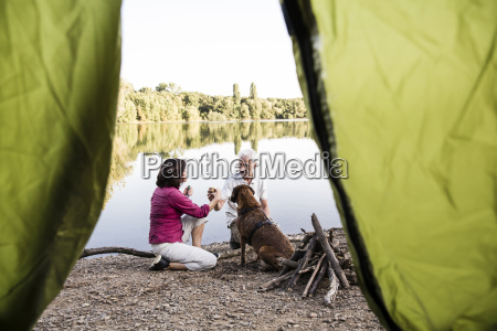 senior couple camping with dog at