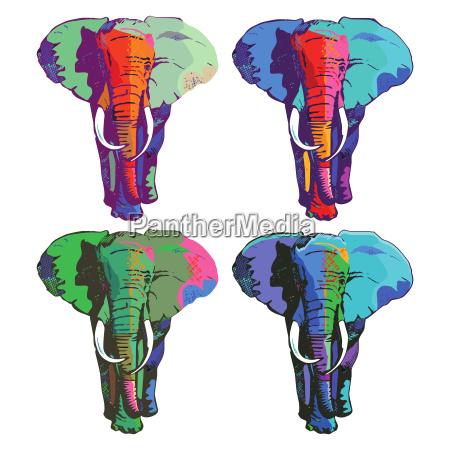 bunte, elefanten - 20289731