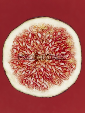a slice of red fig on