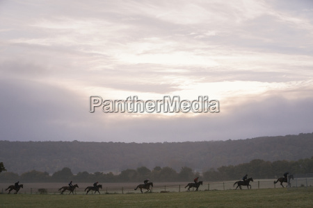 sport pferd ross tier saeugetier wolke