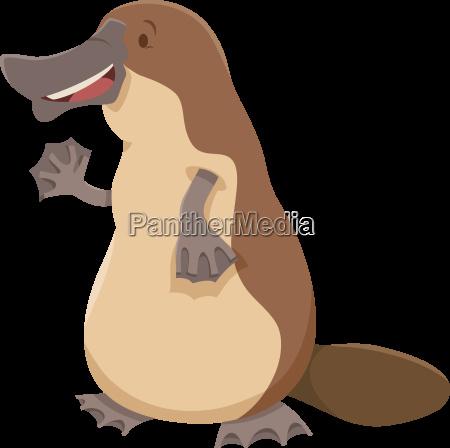 platypus animal character