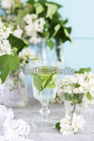 a glass of water with mint